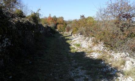 Caniac du Causse