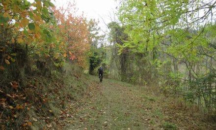 Vtt à Villasavary – Mont Carrière 322m