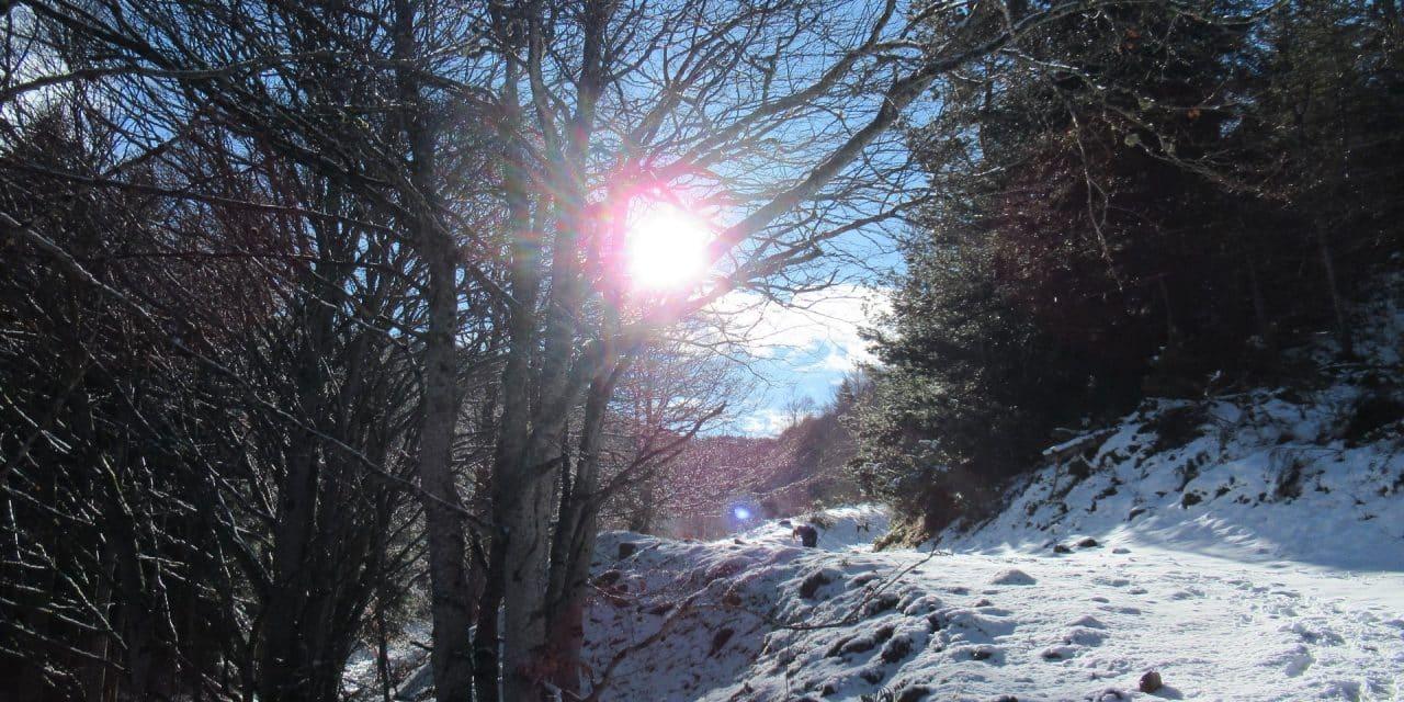 Crêtes de Camurac – Roc de Quercourt 1820m