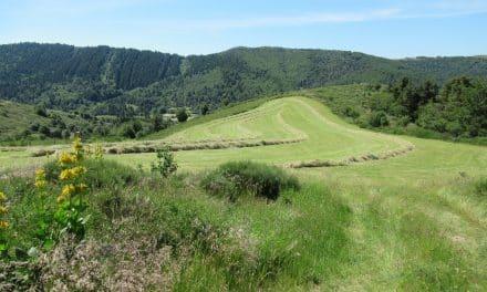 Vtt Suc du Montat 1438m – Col du Pendu 1428m