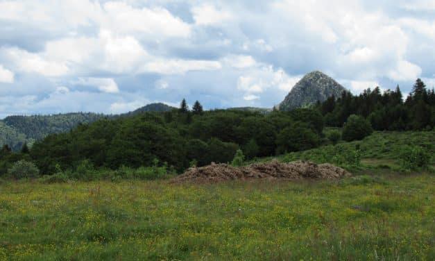 Mont Gerbier de Jonc 1551m