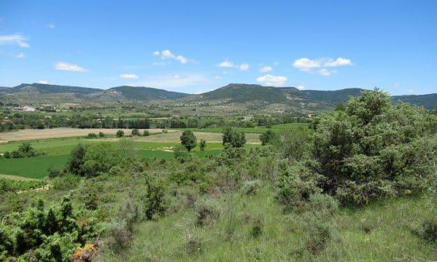 Montagut 439m – Alba la Romaine
